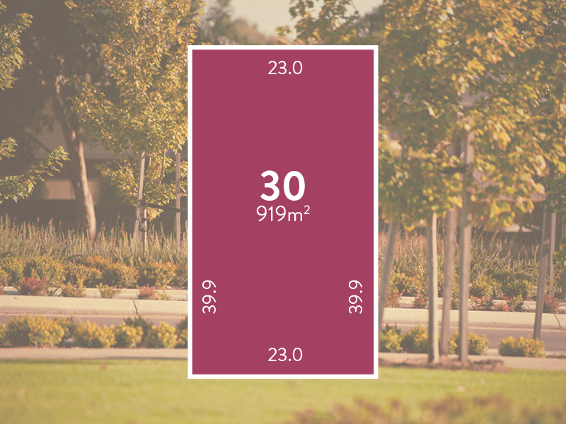 Lot 30 Springview Terrace at Springlake
